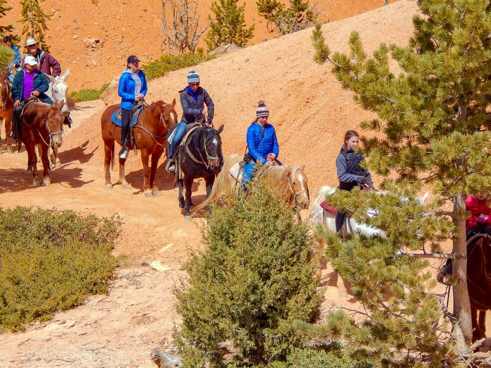 trail rides at bryce canyon