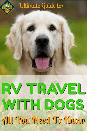 ultimate guide to rv travel with dogs