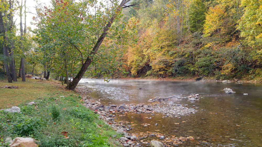 A stream running through a wooded park