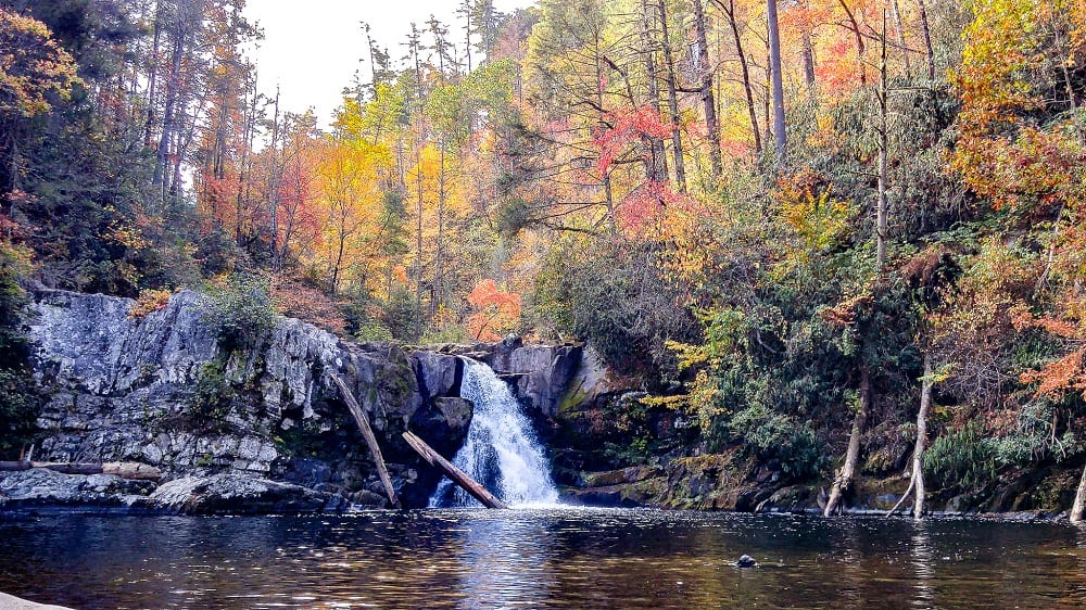 Waterfal surrounded by orange and green trees