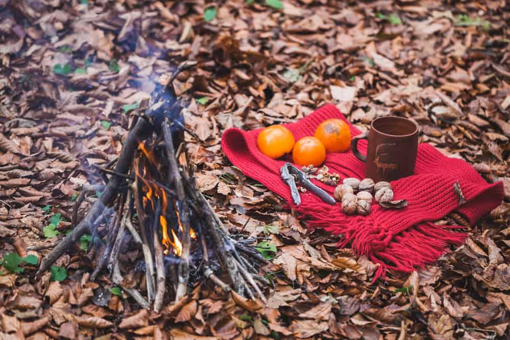 Non perishable food in autumn forest near bonfire